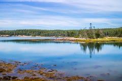 Pouco ilha dos alces na península ay de Schoodic do parque nacional do Acadia imagem de stock royalty free