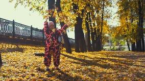 Pouco jogos bonitos da menina com as folhas amarelas no parque da cidade no verão indiano filme