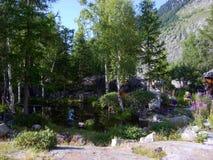 Pouco lago da montanha cercado por árvores Chamonix, França Fotografia de Stock