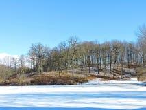 Pouco lago em Vytenai, Lituânia Fotografia de Stock