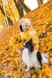 Pouco menina bonita com cabelo louro e o cão pequeno no fundo do outono imagem de stock royalty free