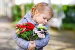 Pouco menina bonita da crian?a com as flores vermelhas e brancas do ran?nculo no jardim da mola Beb? bonito feliz que guarda fres imagens de stock royalty free