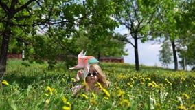 Pouco menina bonito que joga com dentes-de-leão em um dia ensolarado da mola video estoque