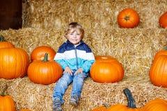Pouco menino bonito da criança que senta-se com abóbora enorme Fotografia de Stock Royalty Free