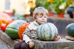 Pouco menino bonito da criança que senta-se com a abóbora enorme no Dia das Bruxas ou no th Imagem de Stock Royalty Free