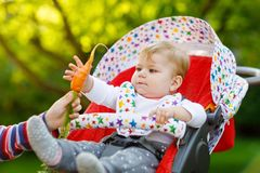 Pouco menino louro da criança que dá uma cenoura à irmã do bebê Irmãos felizes que comem o petisco saudável Bebê que senta-se no  Foto de Stock