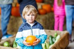 Pouco menino louro da criança que guarda a abóbora verde Fotos de Stock Royalty Free