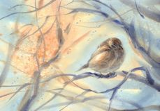 Pouco pardal do pássaro no fundo da aquarela do ramo ilustração stock
