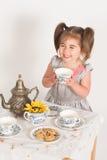 Pouco partido de chá Imagem de Stock Royalty Free