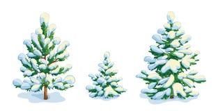 Pouco pinheiro coberto de neve e dois abeto Vetor que dwawing ilustração do vetor