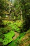 Pouco rio Imagens de Stock