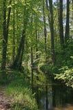 Pouco rio de Duete, Baixa Saxónia, Alemanha foto de stock