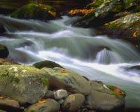Pouco rio - Elkmont foto de stock royalty free