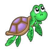 Pouco roxo da tartaruga de mar Fotos de Stock