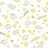Pouco teste padrão sem emenda bonito das flores e da folha da aquarela Foto de Stock
