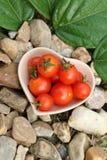 Pouco tomate vermelho na bacia cerâmica Foto de Stock