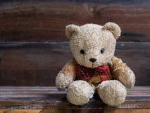 Pouco urso Foto de Stock Royalty Free