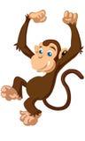 Pouco vetor engraçado bonito do macaco do marrom dos desenhos animados Fotografia de Stock
