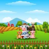 Poucos animais de exploração agrícola em montes Fotografia de Stock