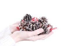 Poucos cones nas mãos Fotografia de Stock