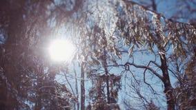Poucos tiros dos jovens brincalhão que caem para baixo na neve, girando, rindo, beijando-se Atividades do inverno vídeos de arquivo