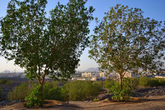 Południe Medina wewnątrz od nadmiernej góry Obrazy Royalty Free