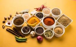 Poudre crue indienne d'épice dans des cuvettes blanches au-dessus de fond rouge ou jaune ou vert, foyer sélectif Images libres de droits