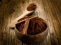 Poudre de cacao avec de la cannelle Photographie stock libre de droits