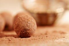 Poudre de cacao de truffes de chocolat époussetée et passoir Photos stock