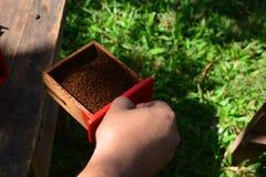 Poudre de café dans la boîte Images stock