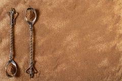 Poudre de cannelle avec des cuillères de vintage Image stock