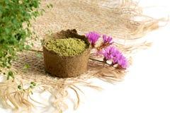 Poudre de henné pour le mehendi de teinture de cheveux et de sourcils et de dessin sur des mains, avec les feuilles vertes, les  photo libre de droits