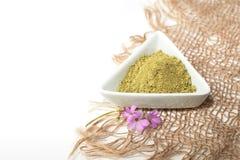 Poudre de henn? pour le mehendi de teinture de cheveux et de sourcils et de dessin sur des mains, avec la palmette verte photo stock