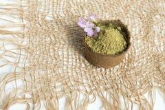 Poudre de henn? pour le mehendi de teinture de cheveux et de sourcils et de dessin sur des mains, avec la palmette verte images stock