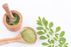 Poudre de Moringa et feuilles - moringa oleifera Images stock