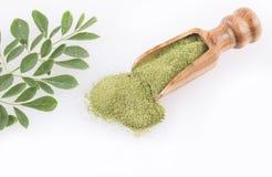 Poudre de Moringa et feuilles - moringa oleifera Image libre de droits