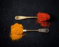 Poudre de piment et safran des indes dans une cuillère de vintage sur un fond foncé Images libres de droits