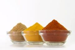 Poudre de poudre de piments, de poudre de safran des indes et de coriandre dans la cuvette Images stock