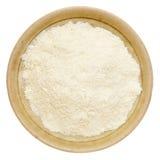 Poudre de protéine de lactalbumine Image stock