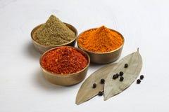 Poudre de safran des indes et safran des indes entier Image libre de droits