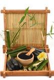 Poudre en bambou et en bambou fraîche et sèche de charbon de bois Photos stock