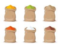 Poudre indienne d'épice dans le sac illustration stock