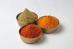 Poudre indienne d'épices Photos libres de droits