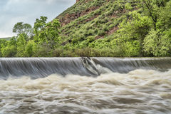 Poudre river diversion dam Royalty Free Stock Image