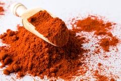 Poudre rouge de paprika Photographie stock libre de droits