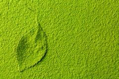 Poudre verte de thé de matcha avec la feuille de thé photos libres de droits