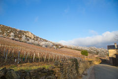 Pouilly and Solutre, Burgundy, France. Landscape of the Solutre Rock region at Pouilly, France Stock Photography