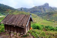 Poulailler dans les montagnes de l'Afrique un matin pluvieux brumeux Photos stock