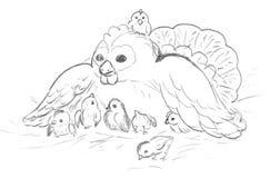Poule avec des poulets, croquis Images libres de droits