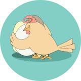 Poule dans le nid avec des oeufs Photographie stock libre de droits